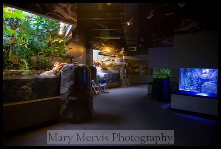 pittsburgh-zoo-wedding-7.jpg
