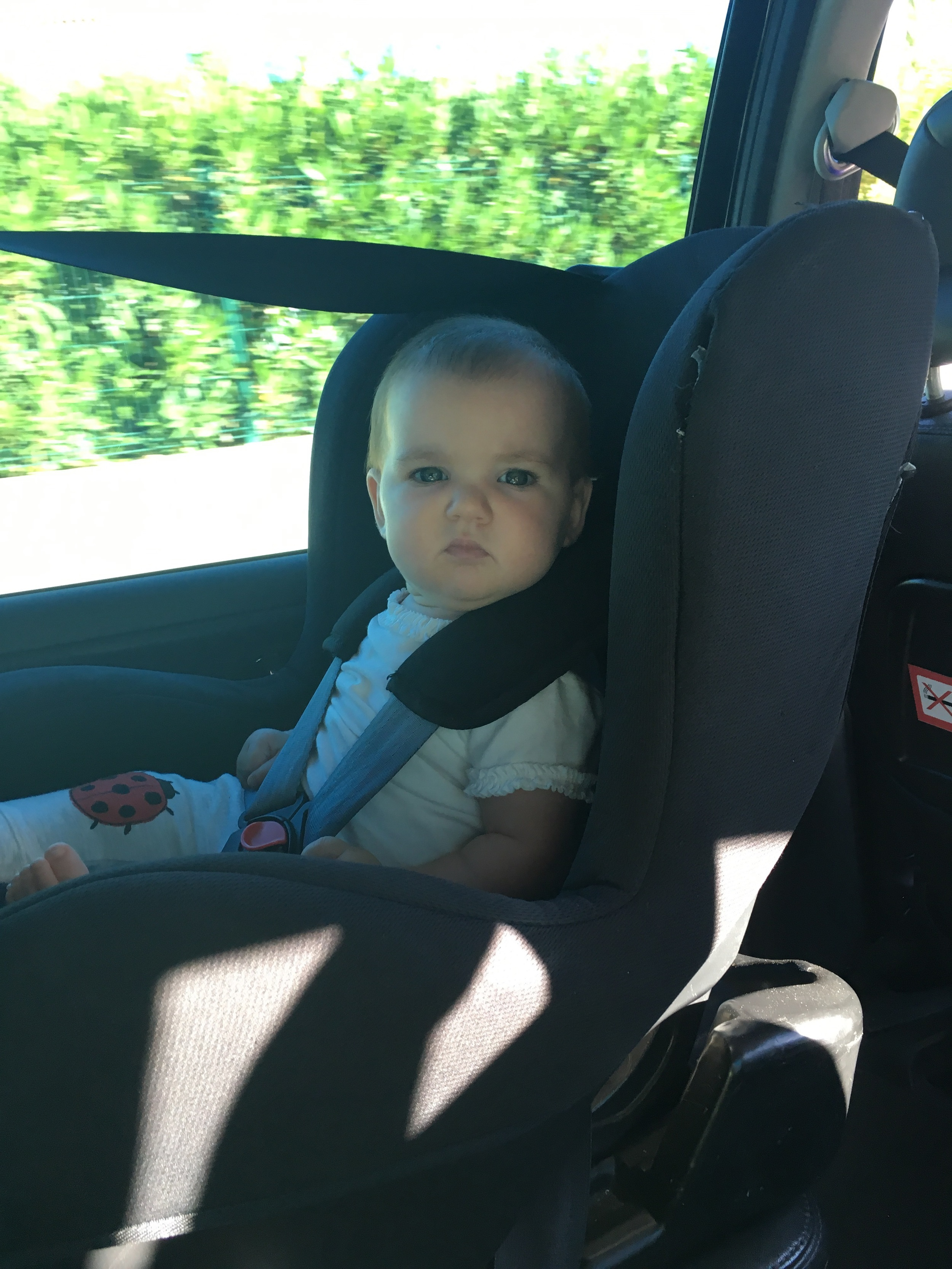 In our private taxi transfer, which came with a car seat.
