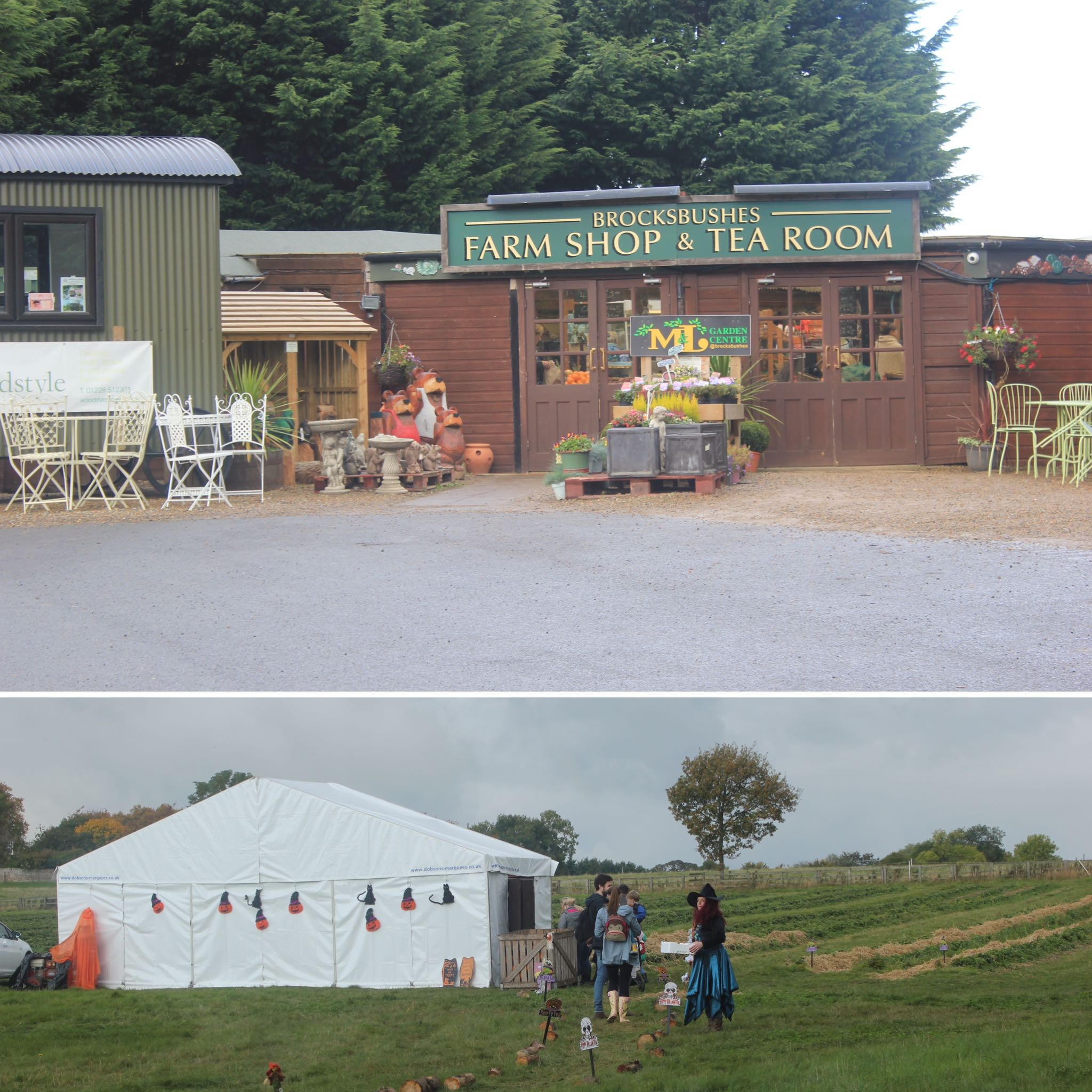 Brocksbushes farm shop and tea room Halloween 2016 Northumberland pumpkin patch kids events baby toddler. Picture of ourside the shop and an marquee