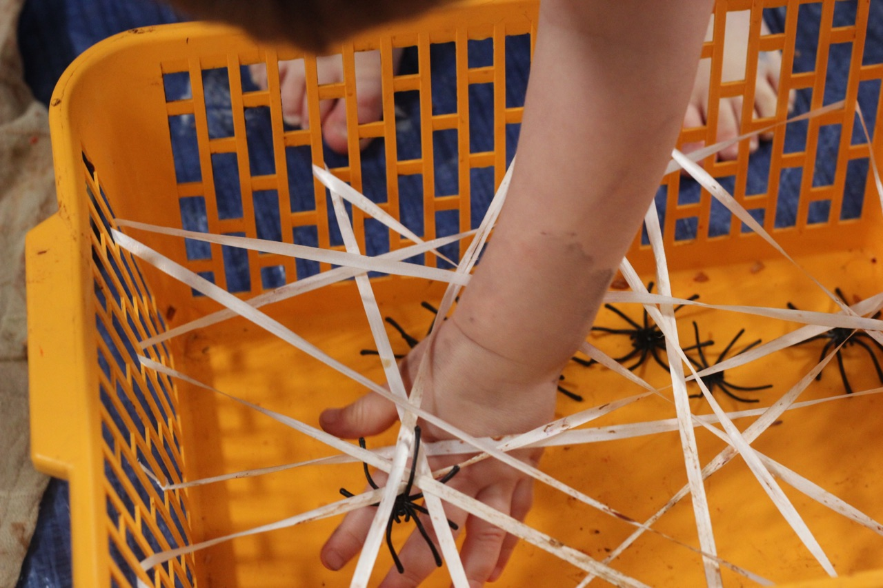 little-learners-preschool-classes-and-parties-a-boy-looks-for-spiders-in-halloween-themed-toddler-game-from-messy-play-mark-making-north-east-newcastle-north-tyneside