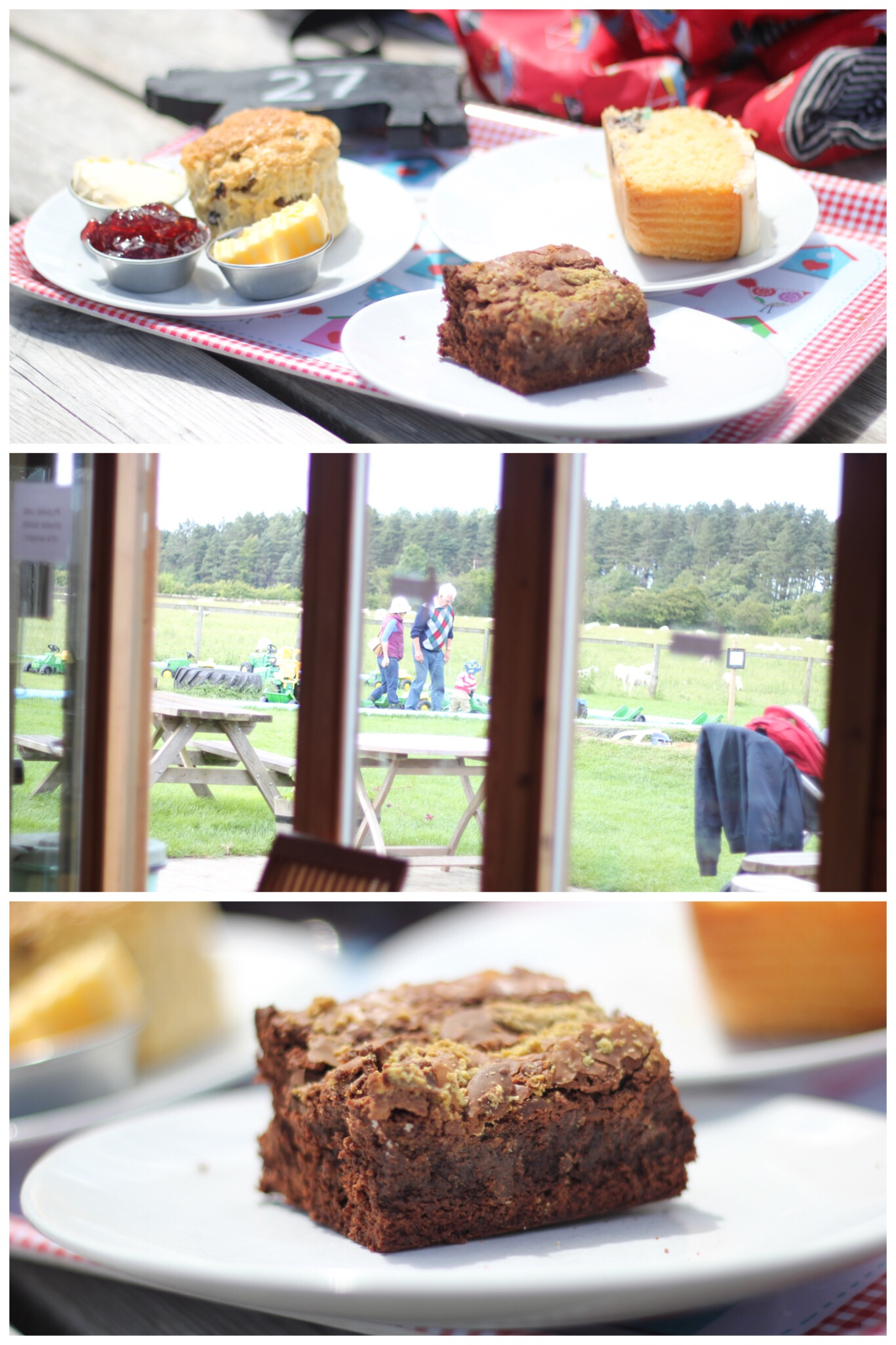 Broom House Farm Coffee Shop Play Equipment Children Sprog on the Tyne Cake Scones