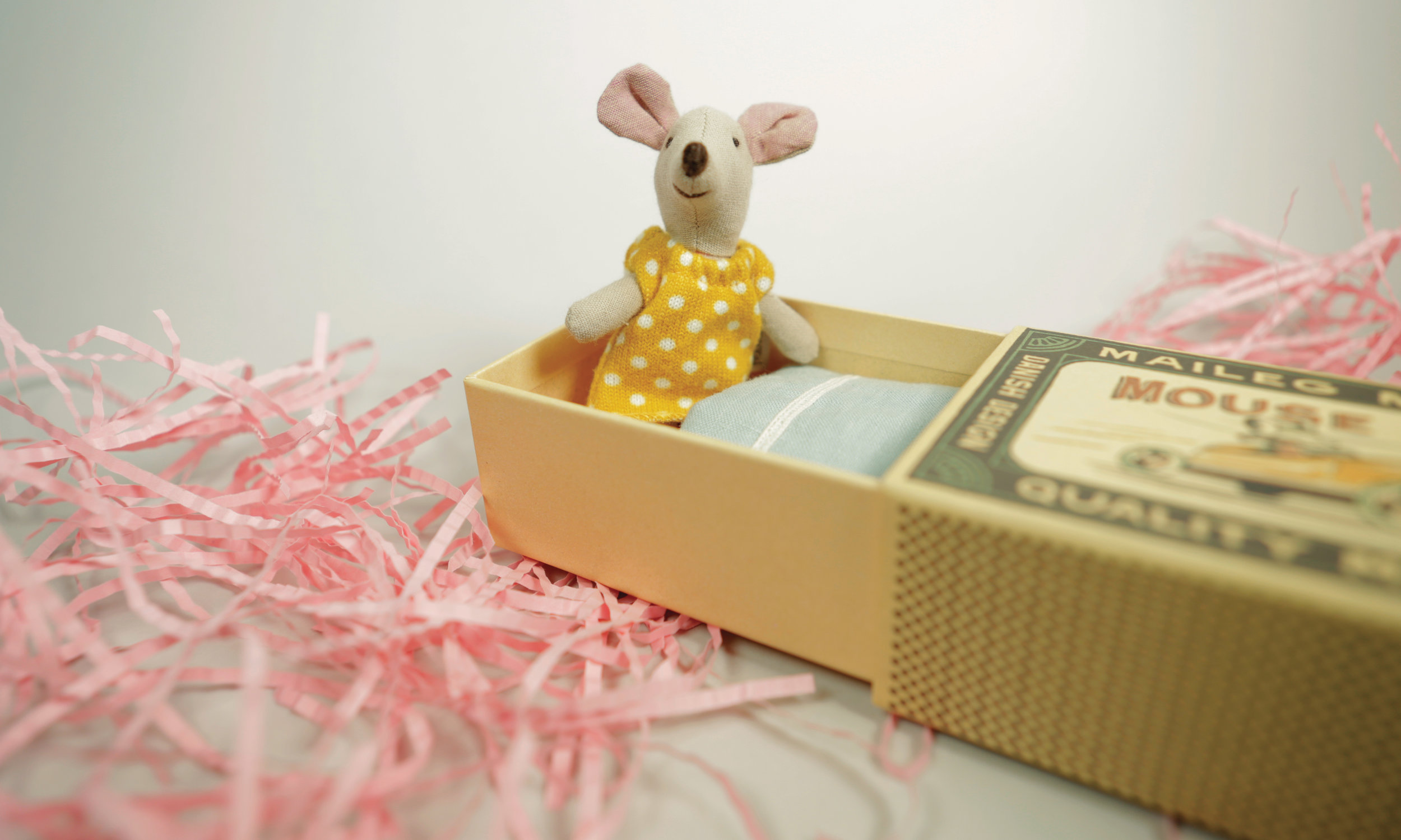 Baby Mouse Bed