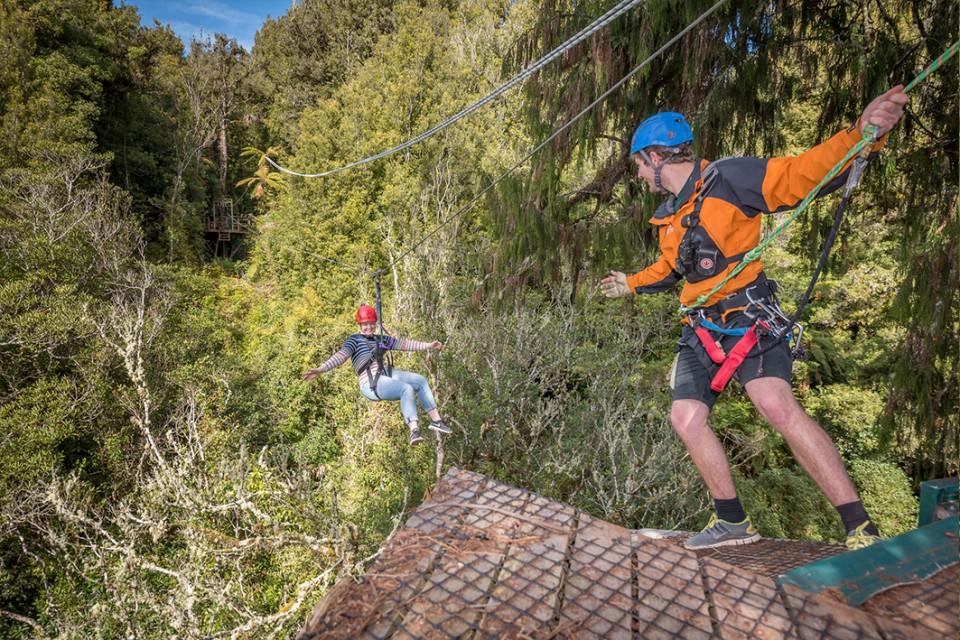 canopy landing-on-a-giant-rimu-tree-on-rotorua-zip-line-tour-960x600.jpg
