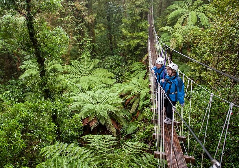 Canopy Swing-bridge-at-Canopy-Tours-Rotorua-1-e1475371296444-960x600.jpg