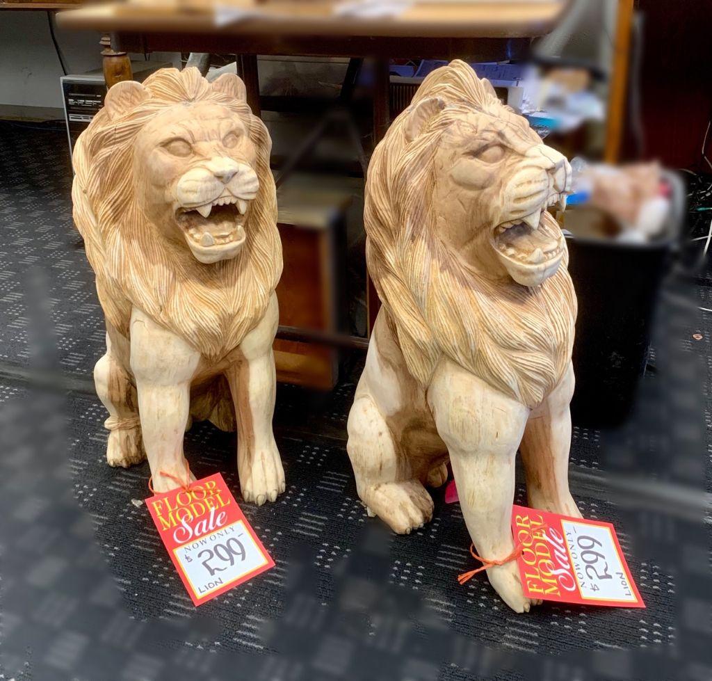 2 lion.JPG