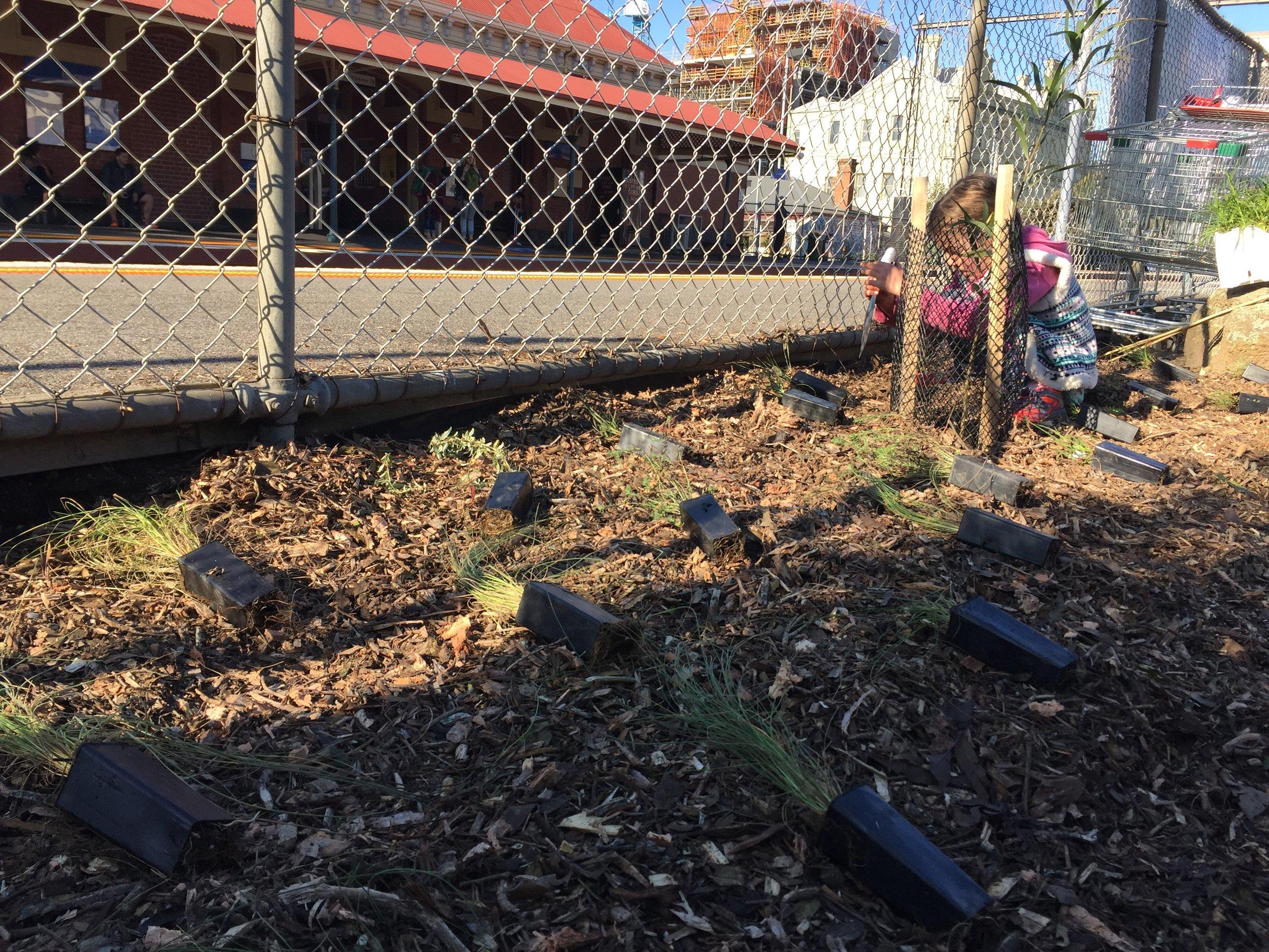 Kids planting 2.JPG