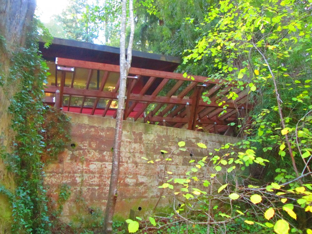 Decking-and-Framing-Green-Sustainable-Building.JPG