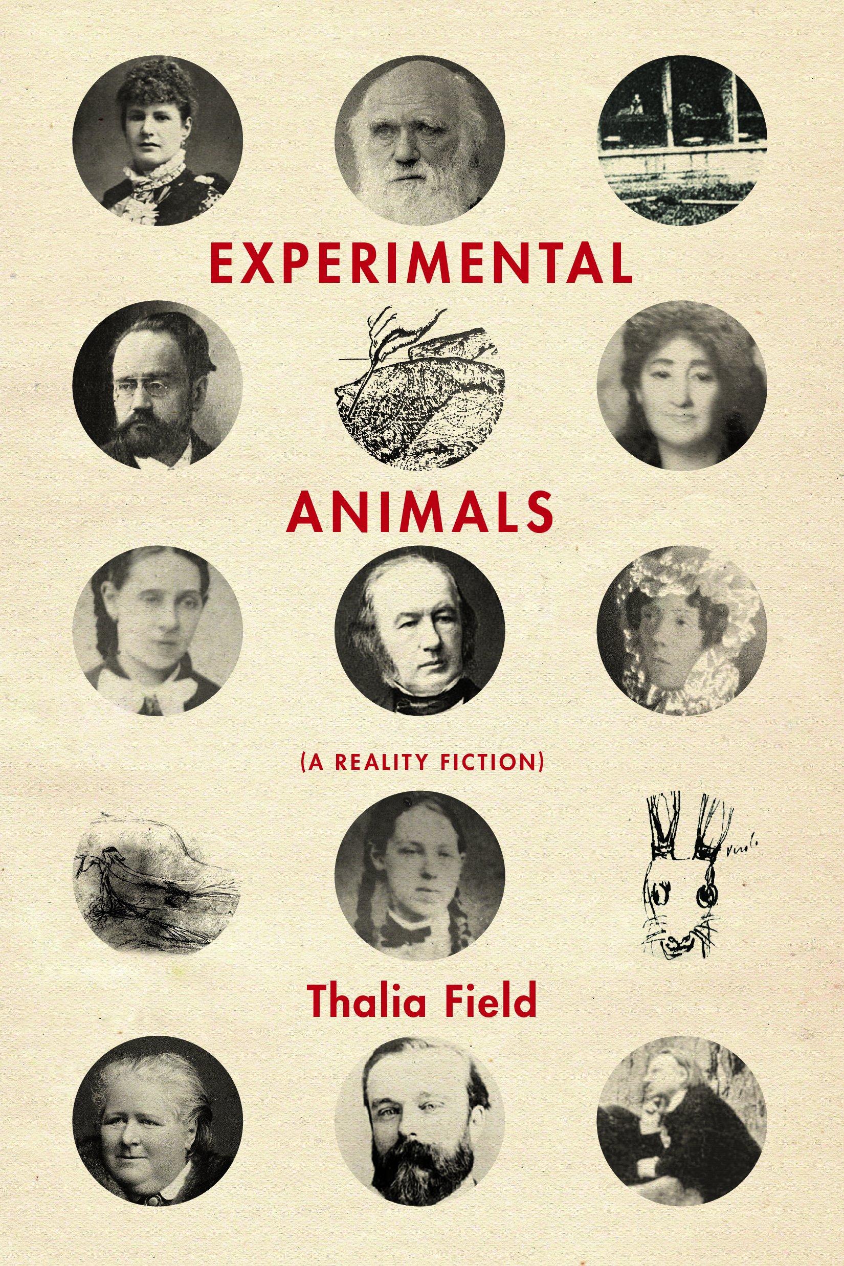 Experimental Animal   by Thalia Field