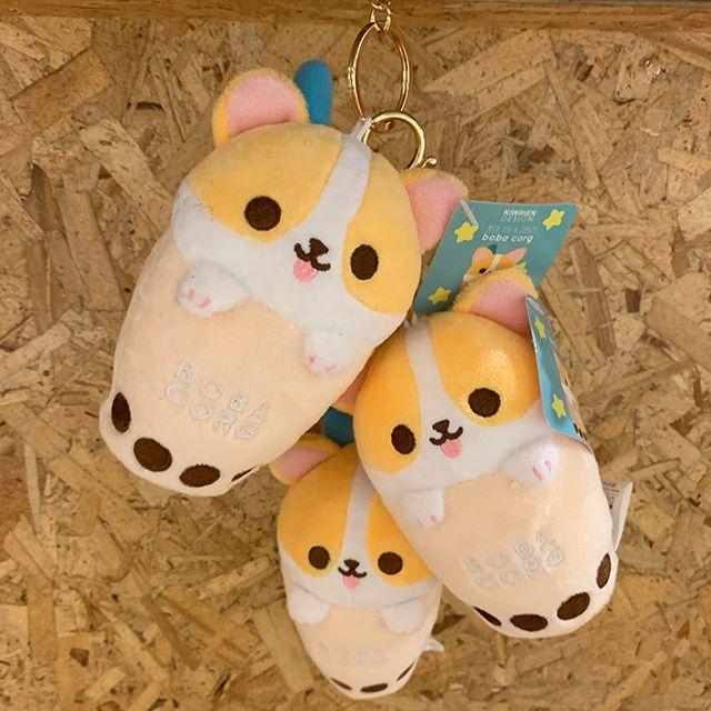Corgi plushies from kiwihen ❤️ • • • #kiwihen #corgi #plushies #bobacorgi #cute #kawaii #corgibreadbaker #corgibreadloaf #loaf