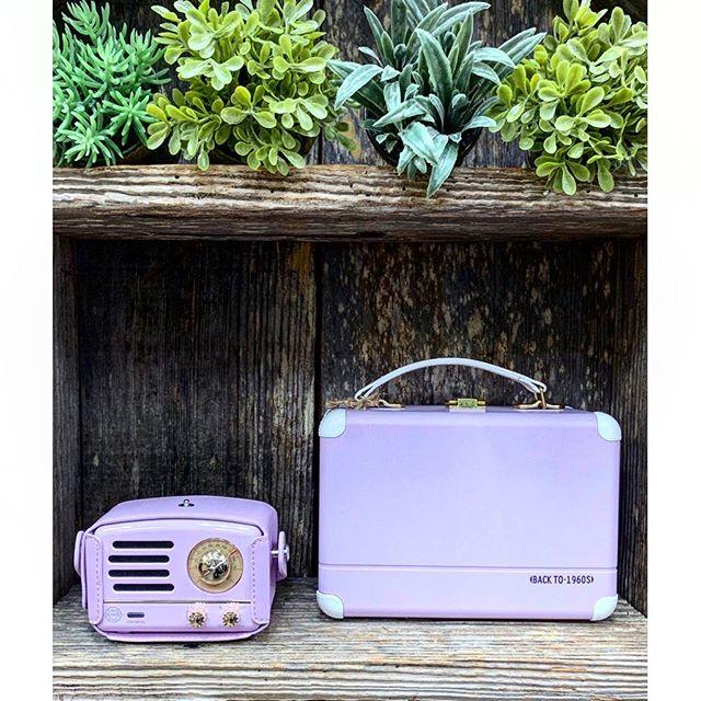 The best portable speakers to bring to any adventure 🏖🏕🗺 • • • #muzen #portablespeakers #audio #bluetooth #radio #speaker #fmradio #wireless #teamnoheadphones #gadgets #adventureawaits #travel #volumeup #kawaii #cute