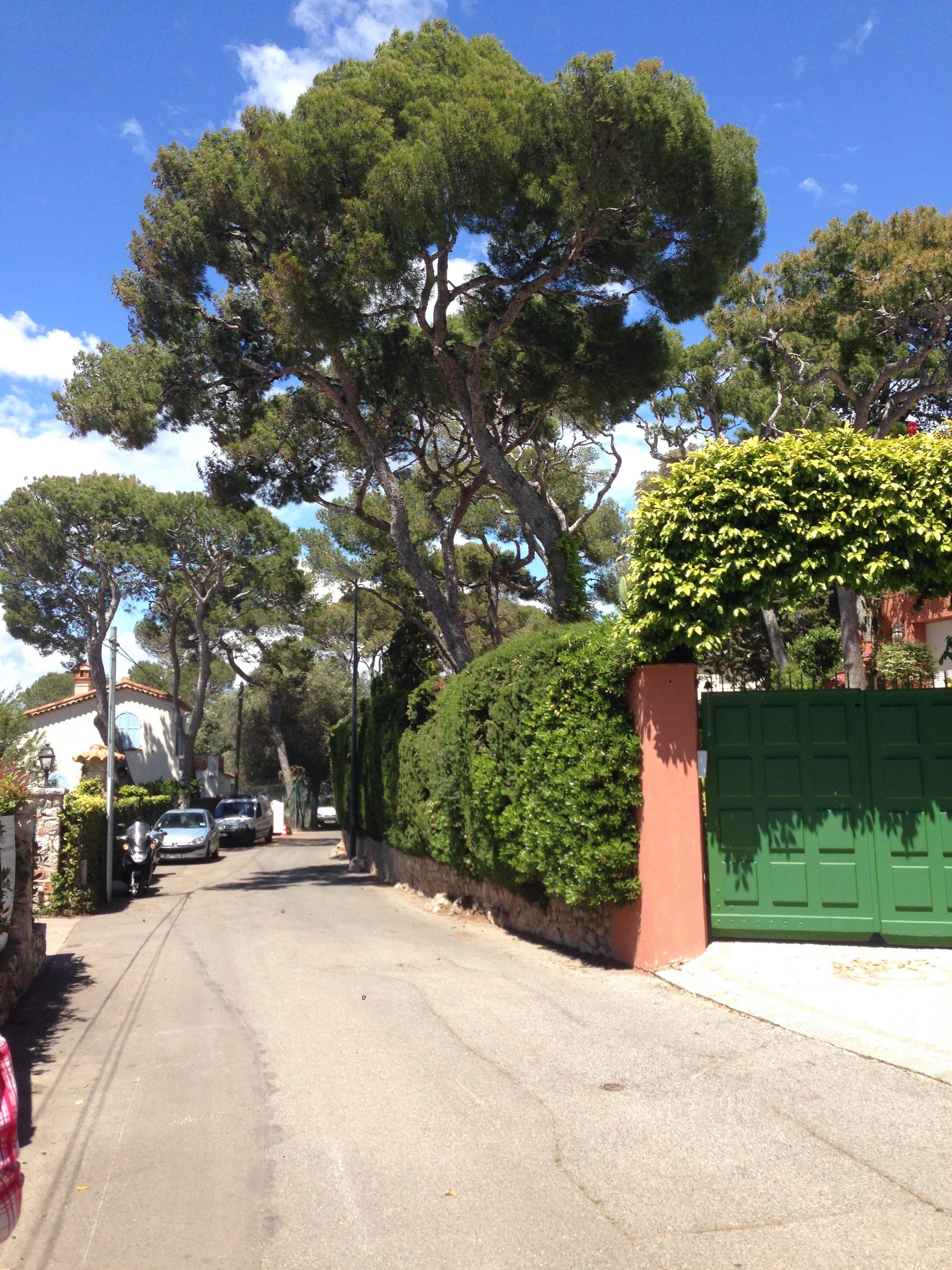 Walking around the perimeter of Saint-Jean-Cap-Ferrat. The colour combinations are an artist's dream.