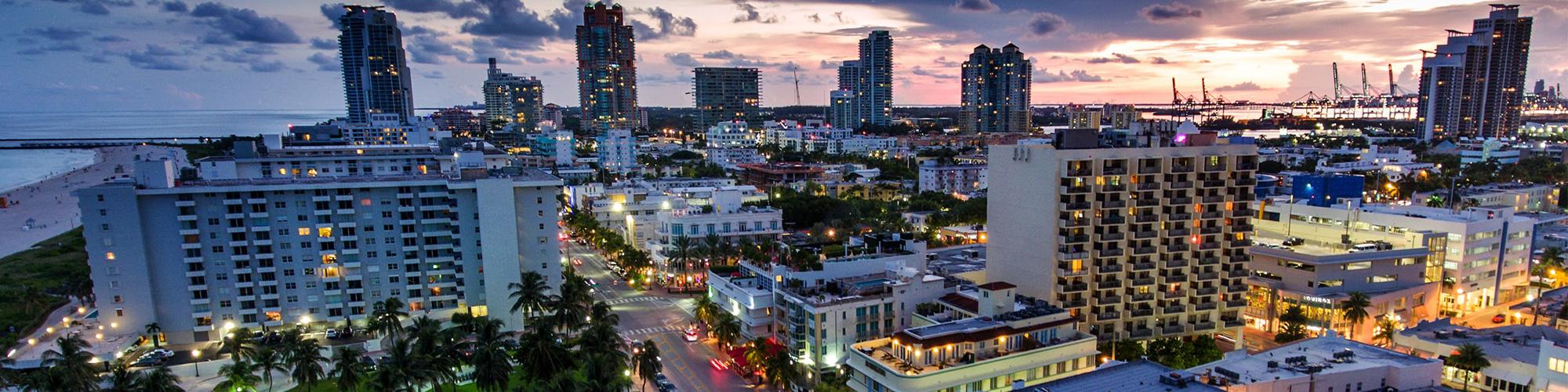 Miami Beach Hotel Area Rugs Royal