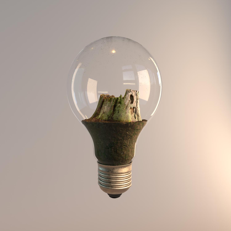 bulb_plant_01.png