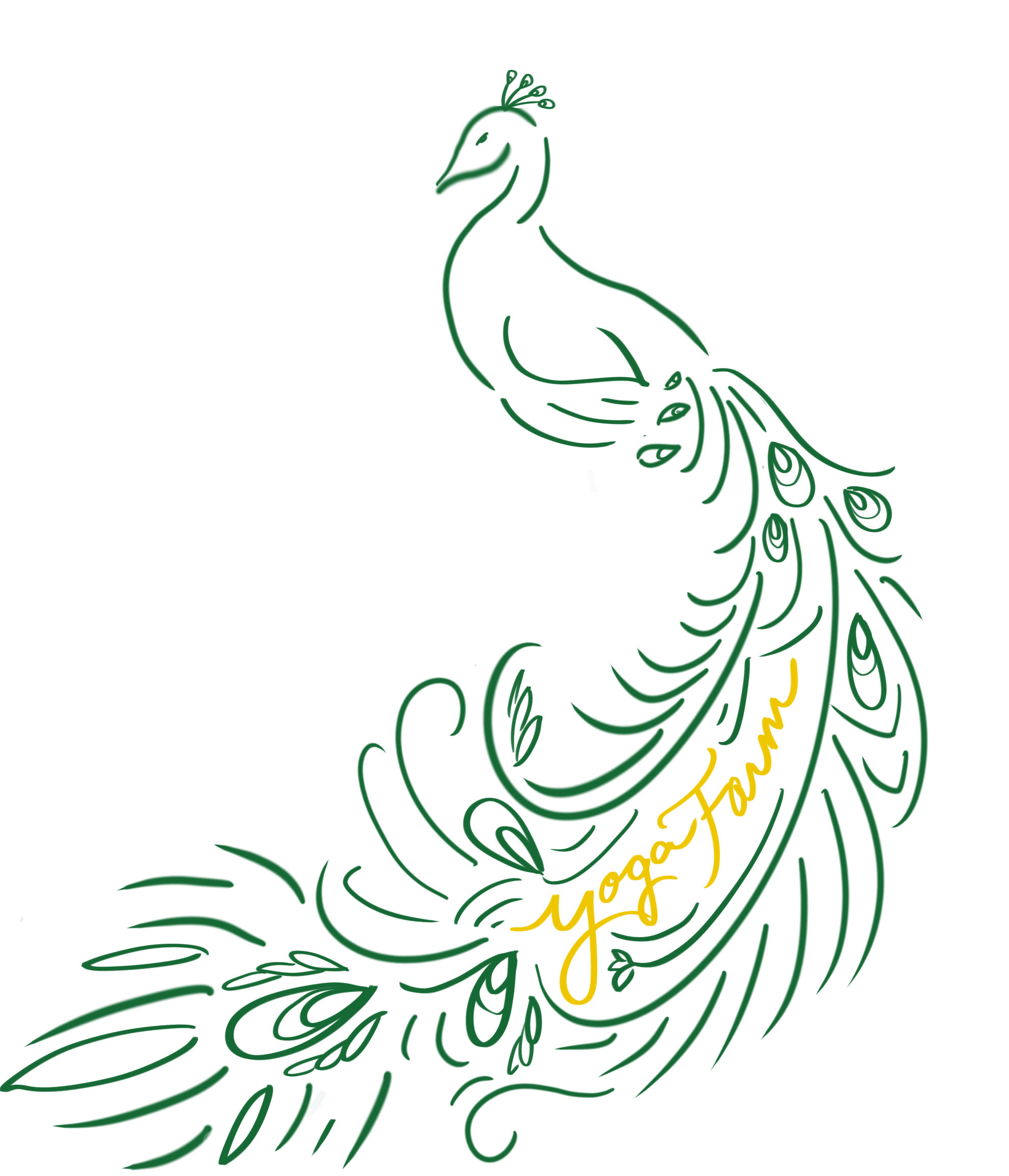 peacock graphic_3.jpg