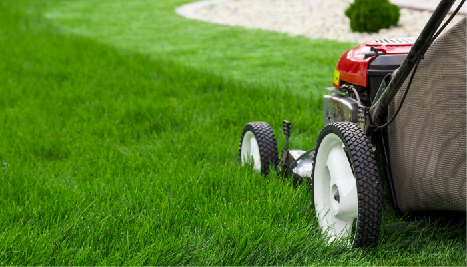 Commercial & Residential Garden Maintenance