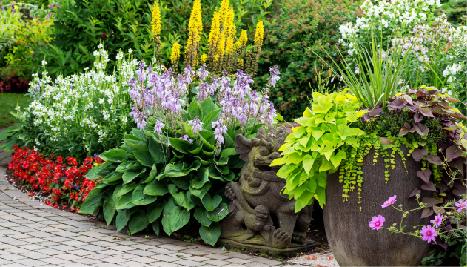 Garden Preparation & Planting