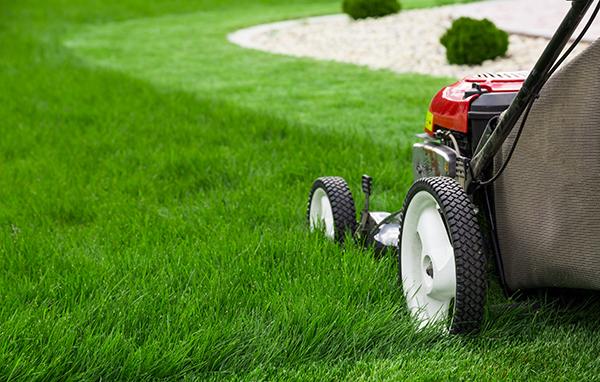 Commercial & Residential Garden Maintenance | Landsculpt Landscaping Services