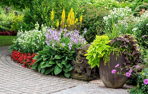Garden Preparation & Planting | Landsculpt Landscaping Services