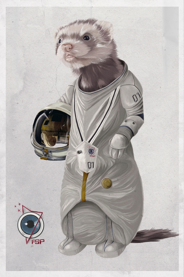 Ferreting in Space