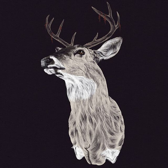 Another old one for #wacomnextlevel because I have nothing new. . @wacomanz @wacom @justanotheragency . #digitalillustration #digitalart #wacom #wacomnextlevel19 #deer #buck #photoshop #illustration