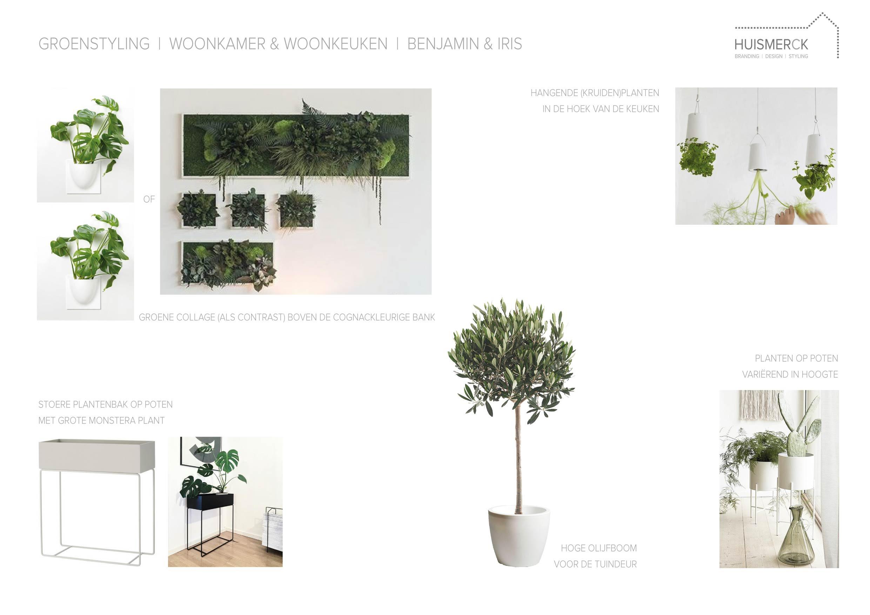 HUISMERCK_Interieuradvies_Stylingplan_groenstyling_planten_B&I_Woonkamer_woonkeuken_Hengelo-01.jpg