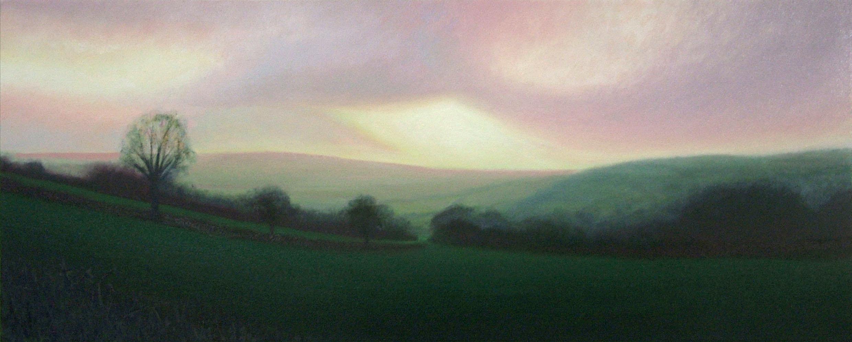 Salway Ash evening light, West Dorset