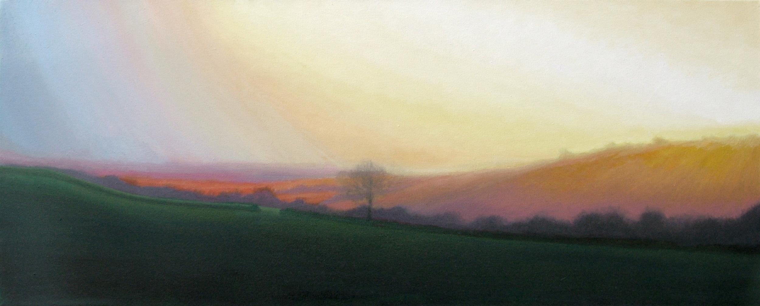 Evening sun near Salway Ash, West Dorset