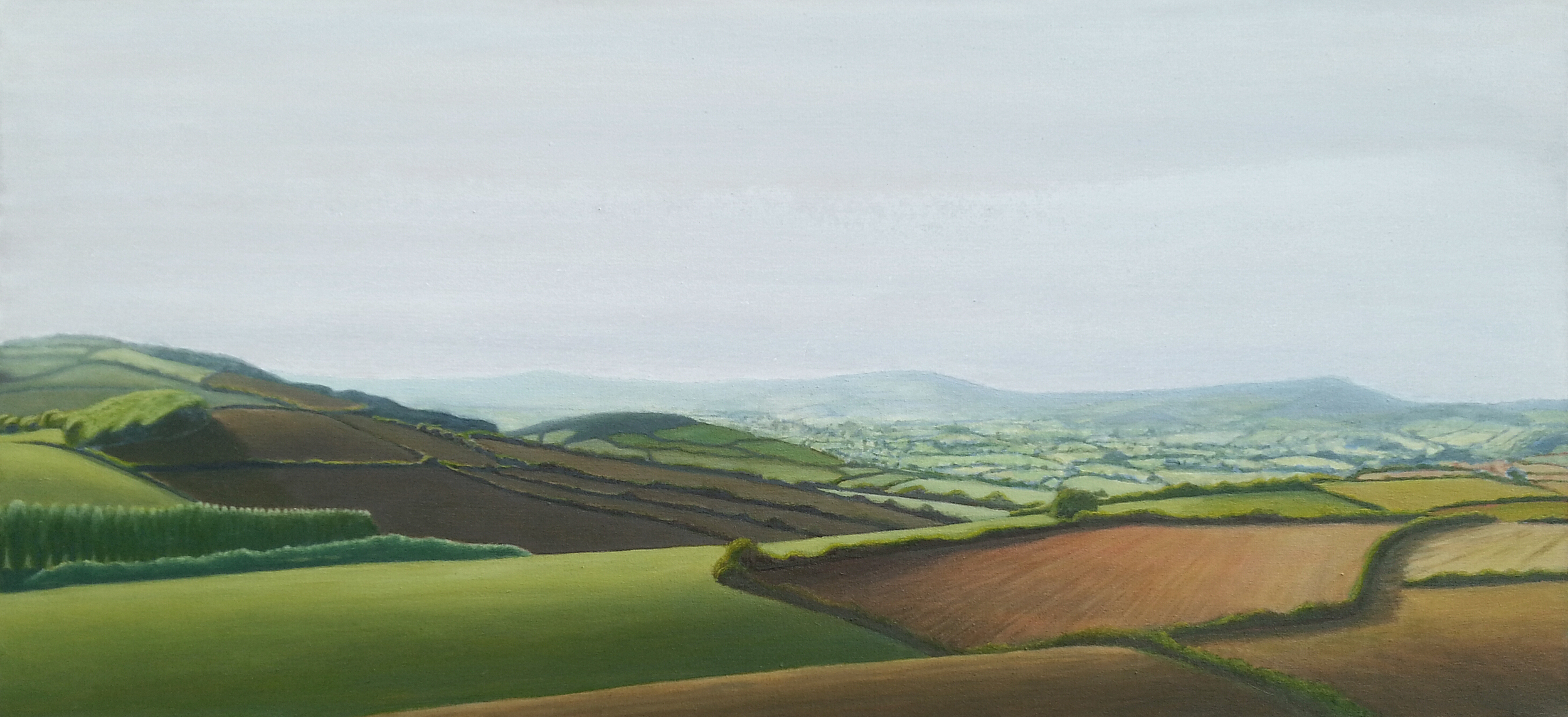 Hazy summers day in the Marshwood Vale, West Dorset