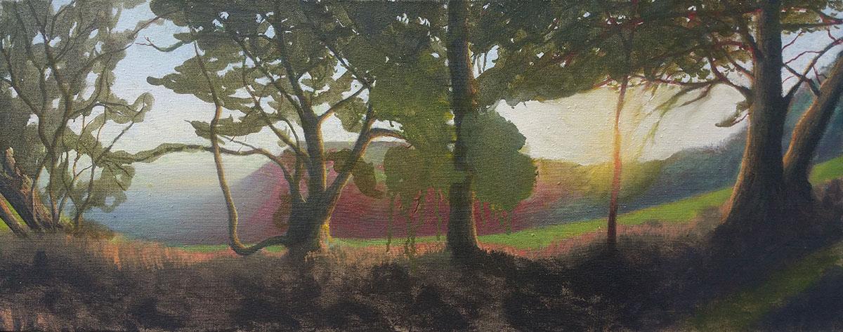 Lewesdon Trees 1200.jpg