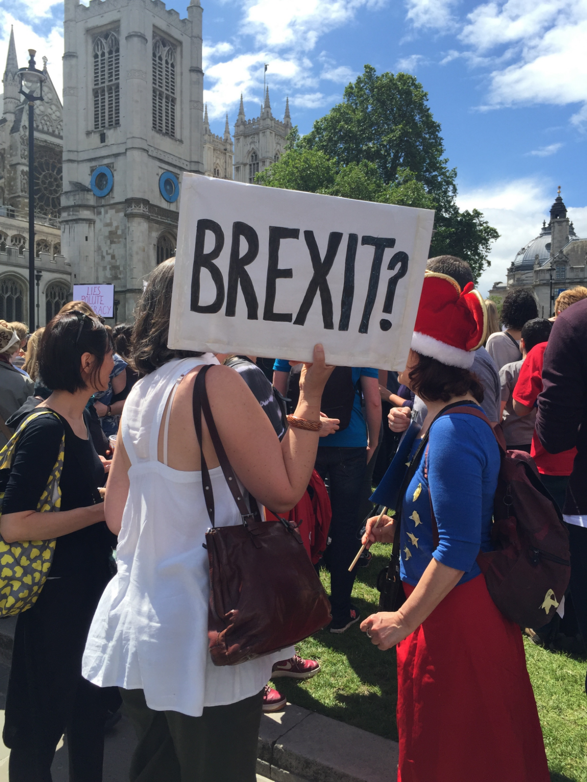 Protesting the UK referendum at The March for Europe.