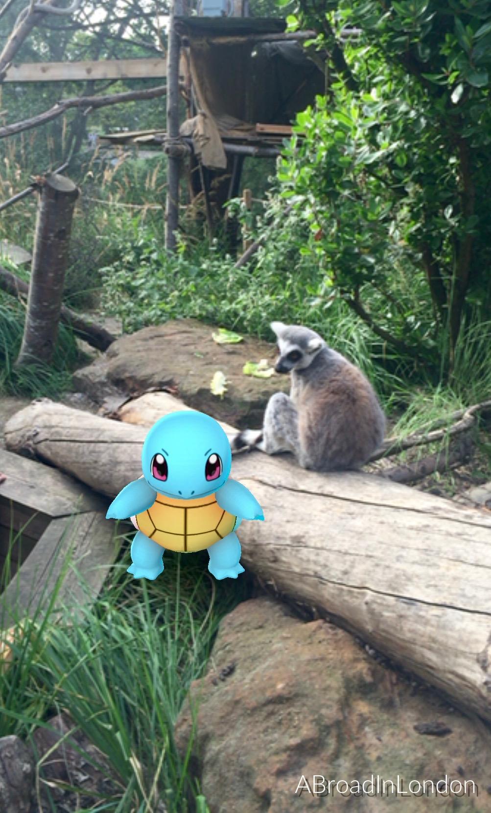 London Zoo, Regent's Park