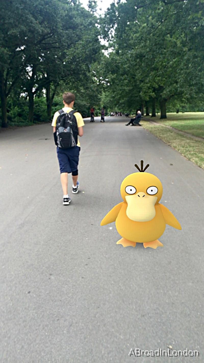 Searching for Pokemon in Regent Park