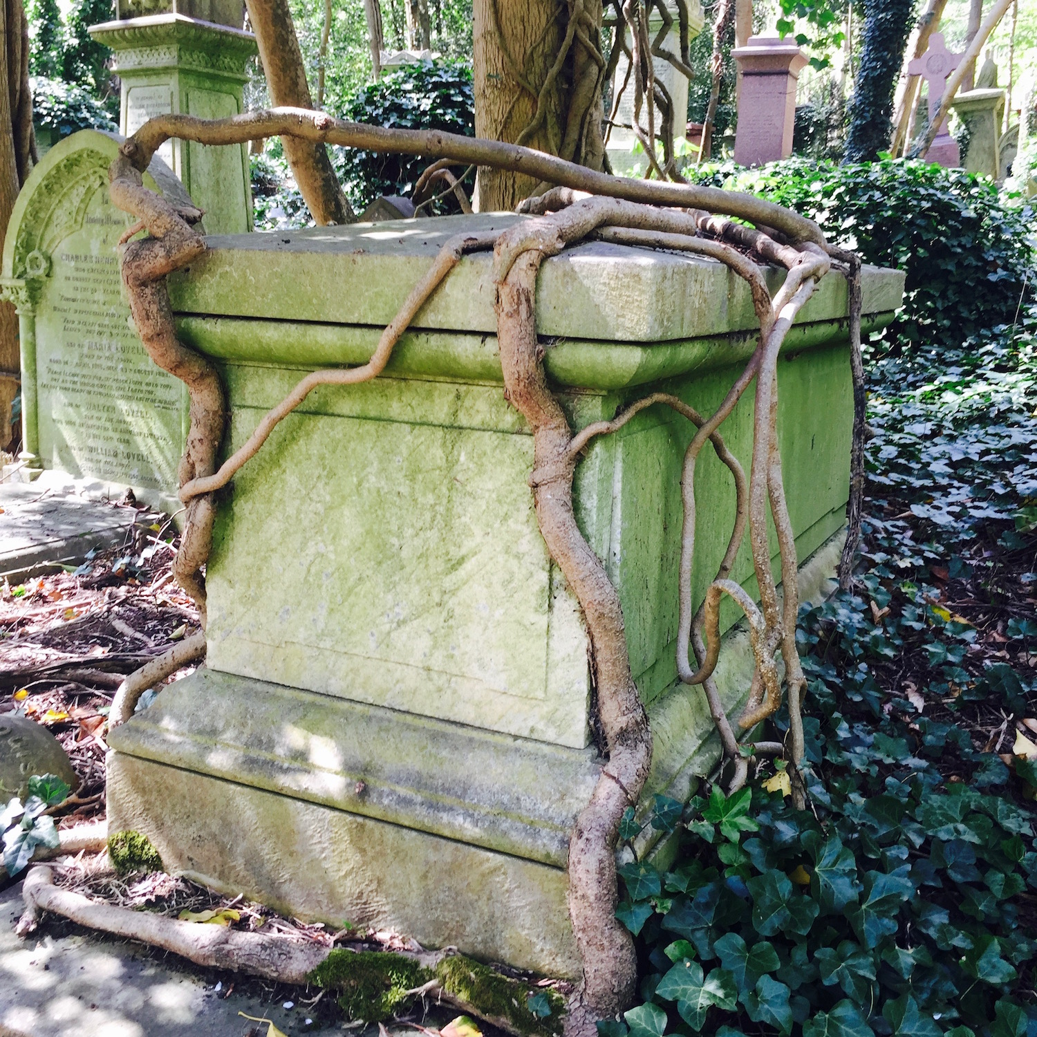 Beautiful tomb entangled in roots in Highgate Cemetery, London