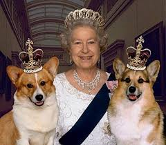 The Queen with her royal dogs