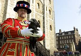 Beefeater Tour. Tower of London