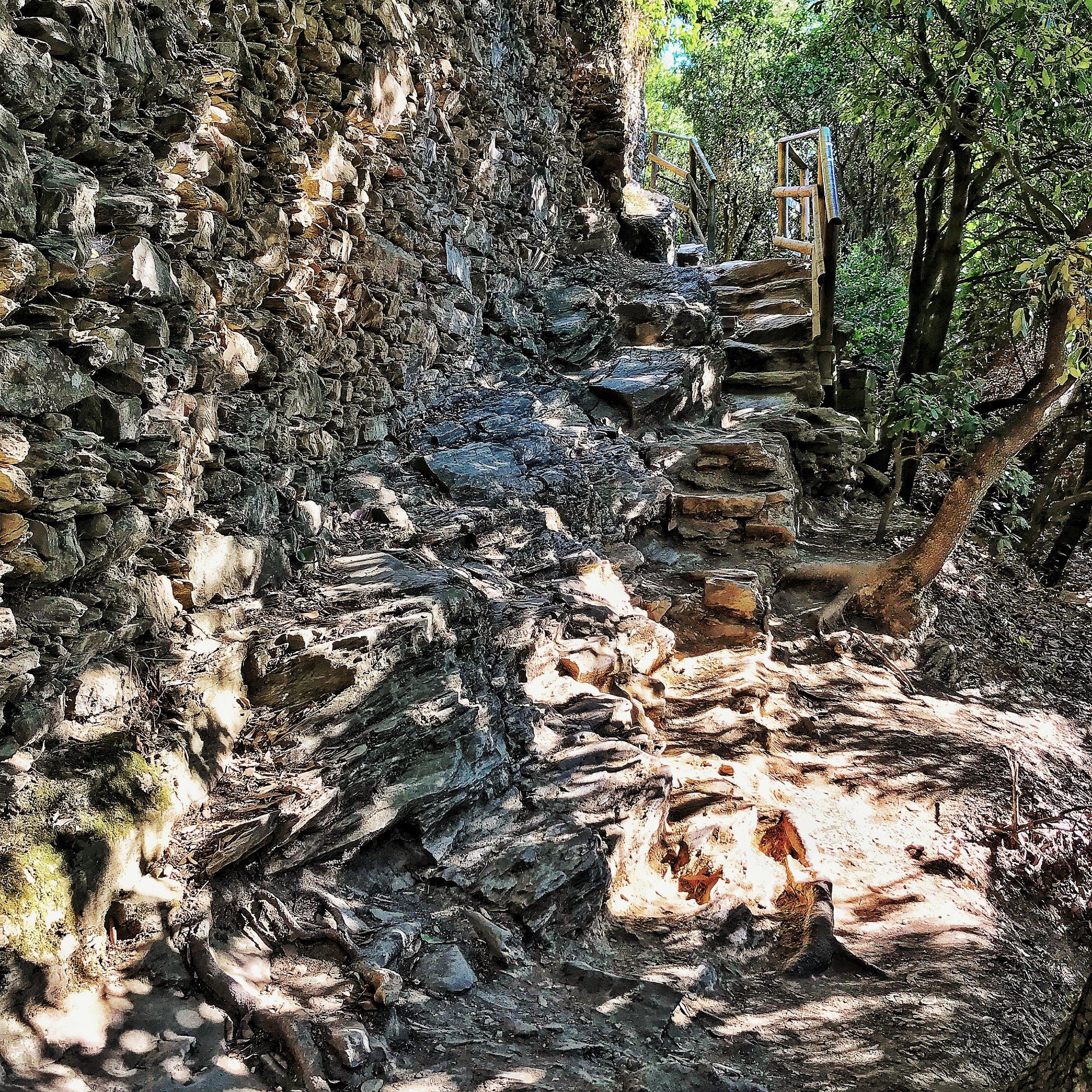 Rock steps of Cinque Terre