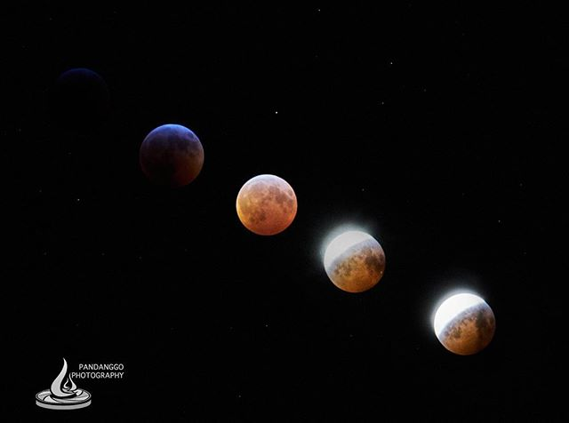Bloodwolf moon lunar eclipse... see you again in two years, under hopefully warmer temperature and no wind gusts. : : #moon #lunareclipse #bloodmoon #wolfmoon #bloodwolfmoonlunareclipse