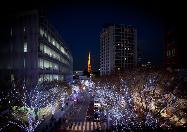 Roppongi_Hills_Christmas_1