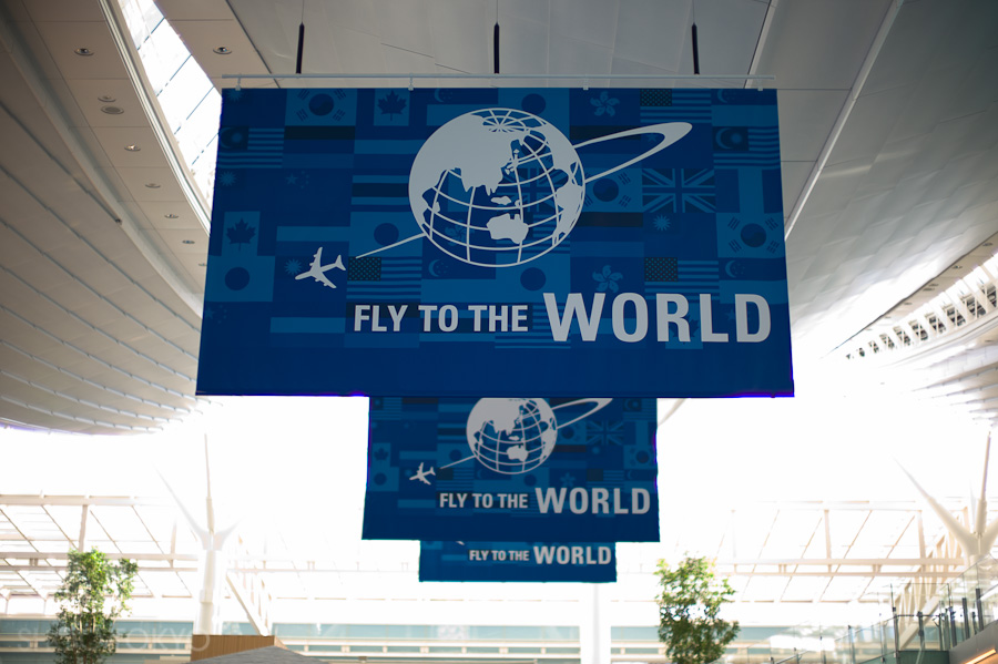 Fly_the_world
