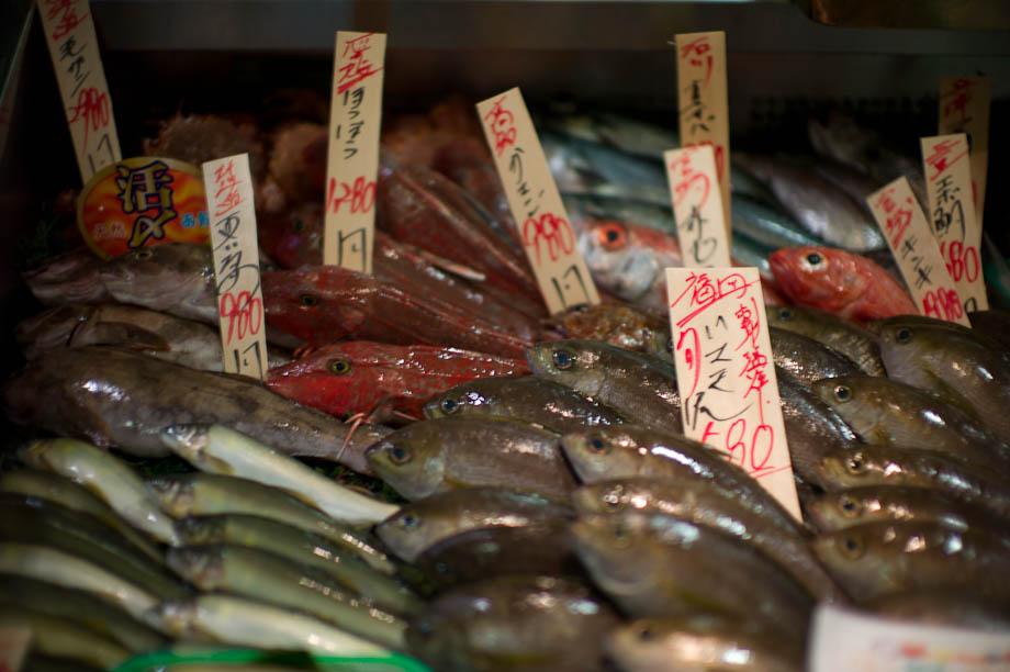 Fish for sale in Tokyo, Japan