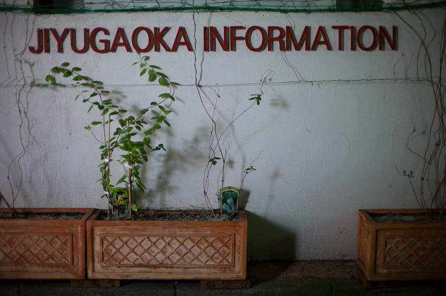 Jiyugaoka Information