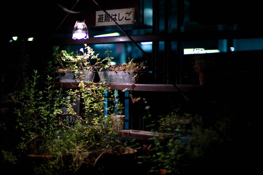 Garden in Jiyugaoka