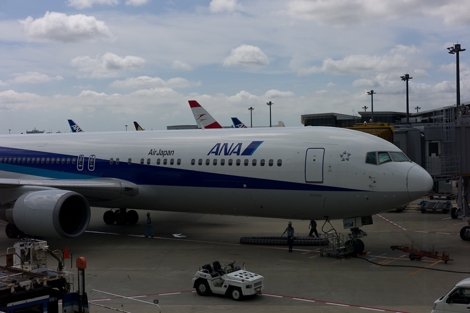 ANA Flight