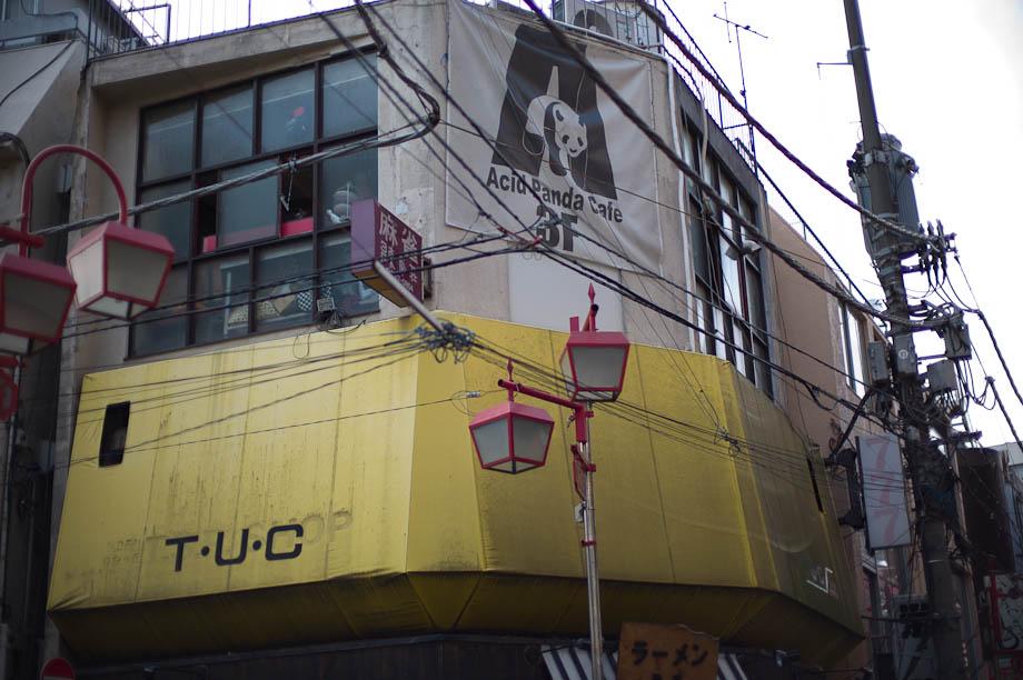 Acid Panda Cafe...loud even on Sunday afternoon