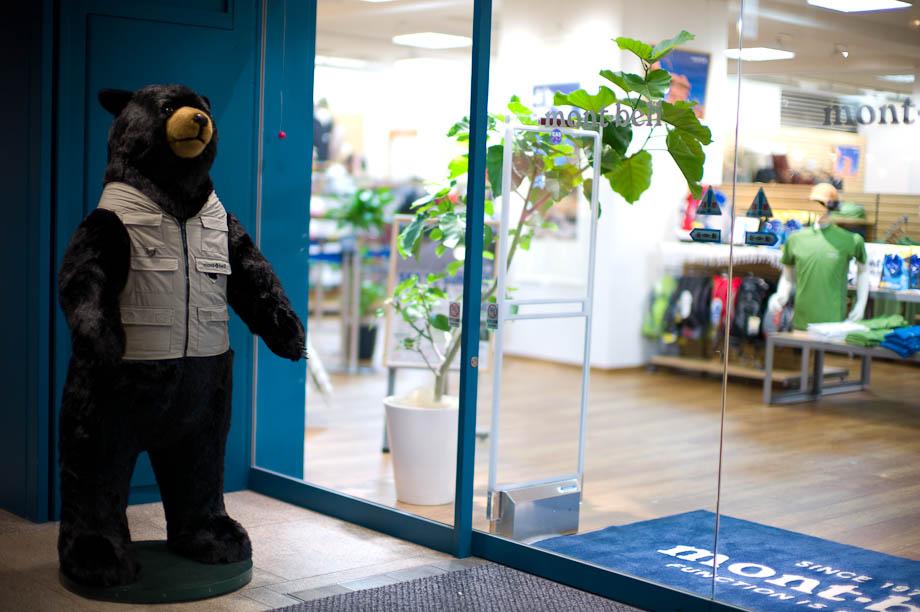 Bear in Shinjuku