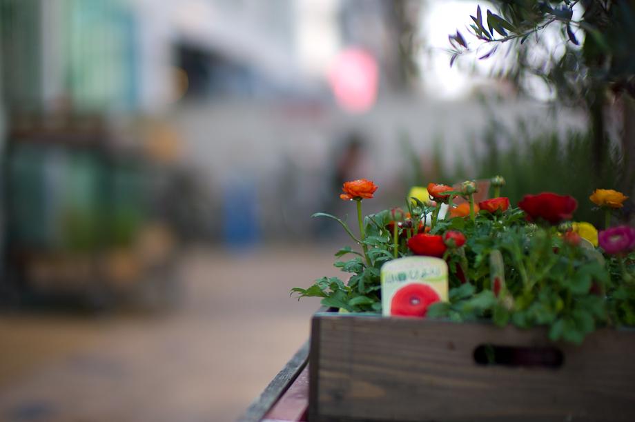 Jiyugaoka Flowershop