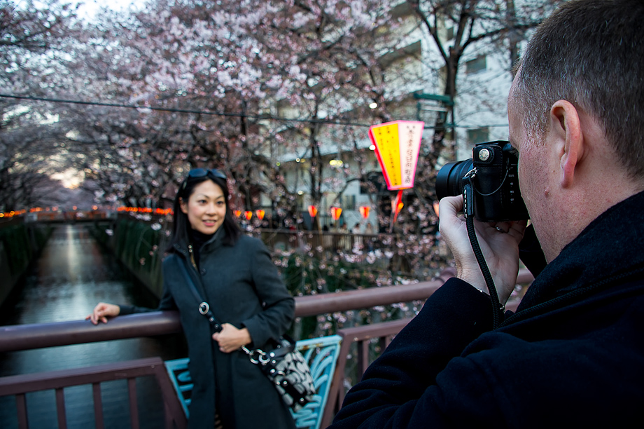 Shooting the Cherry Blossoms
