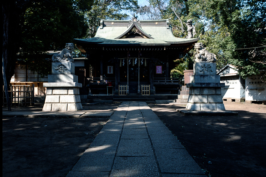Tokyo Temple shot on Portra 400 with a Mamiya 645