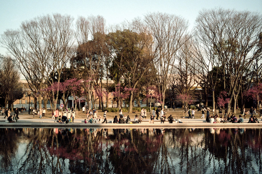 Reflection of Ueno Park shot with Kodak Potra 160 on a Leica M6