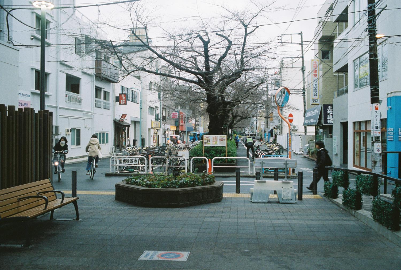 Toristu Daigaku